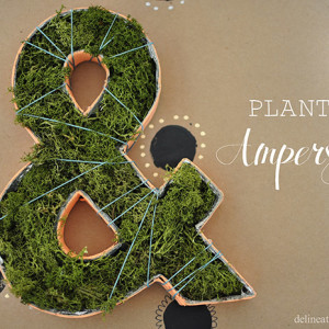 Planted Ampersand, Delineateyourdwelling.com