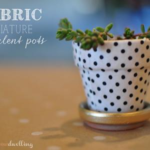 1-garden-miniature-succulent-pots