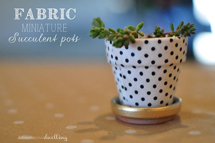 1 garden miniature succulent pots