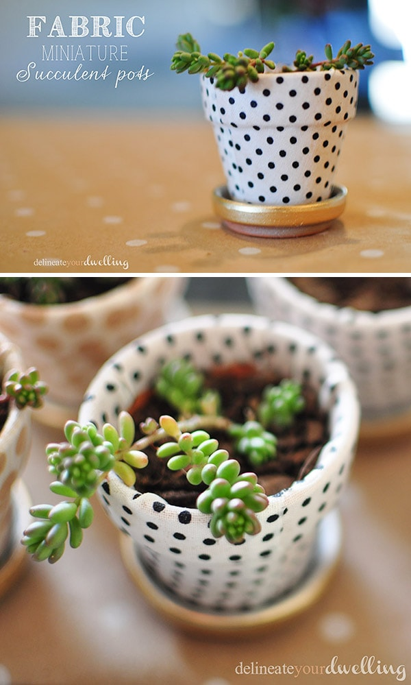 Garden miniature succulent pots, Delineateyourdwelling.com