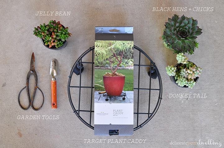 Succulent Table supplies, Delineate Your Dwelling