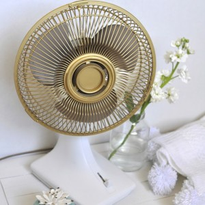 How to Update an old fan to a Gold Fan, Delineateyourdwelling.com