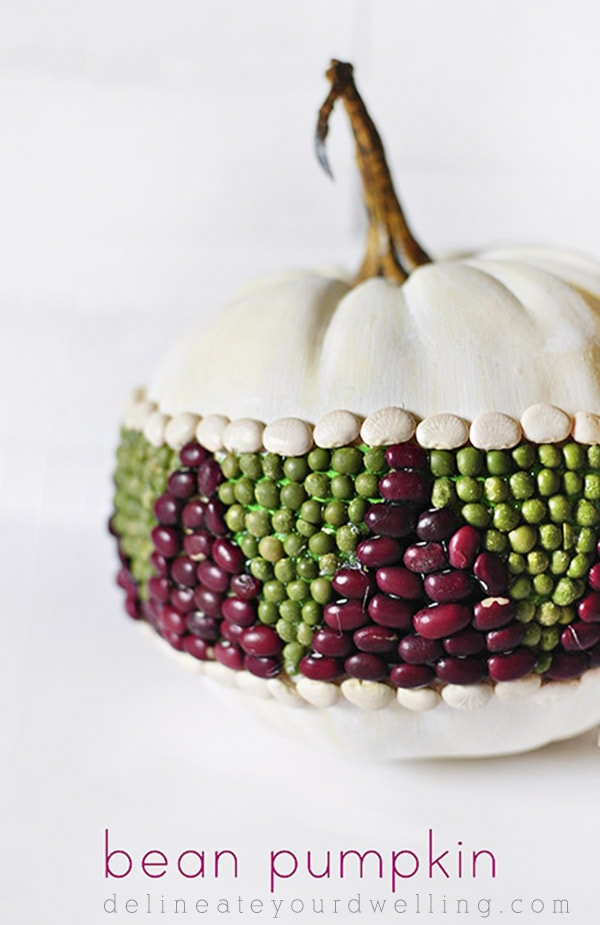 See how to create this easy and fun DIY Bean Pumpkin for the Fall Season! Delineate Your Dwelling