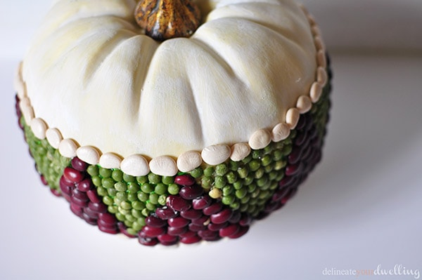 Bean Pumpkin, Delineate Your Dwelling #triangles #geometric #fall