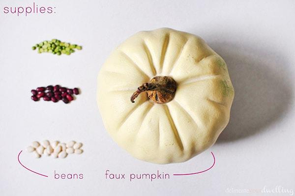 DIY Bean pumpkin supplies