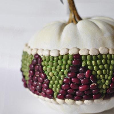 Bean Pumpkin, Delineateyourdwelling.com