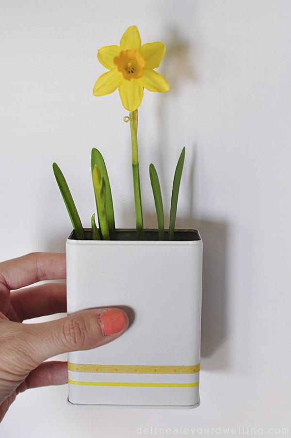 Daffodil Planter DIY, Delineateyourdwelling.com