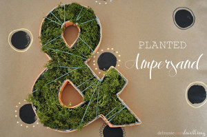 1 Planted Ampersand