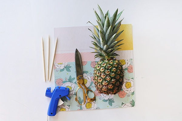 Pineapple Lady supplies