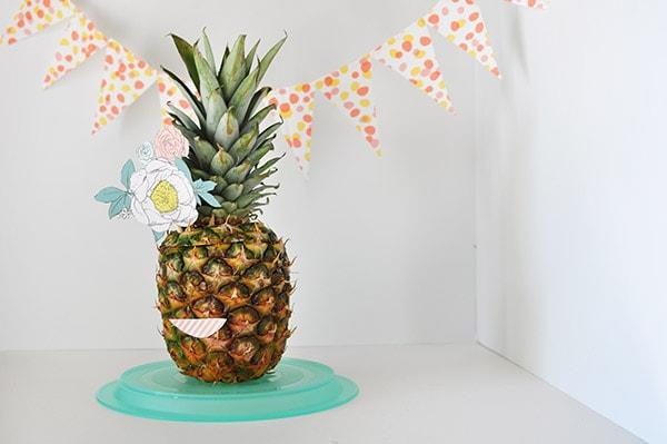 Pineapple Lady, Delineateyourdwelling.com