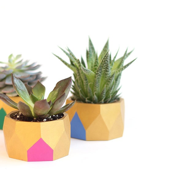 Succulent Bracelet planters, FeatureFriday