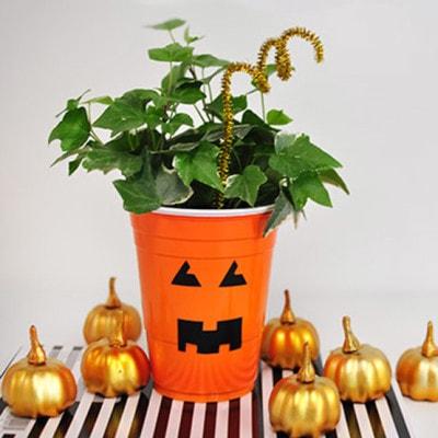 1 Plastic Cup Pumpkin Planter horiz