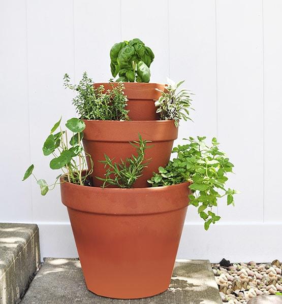 Diy Stacked Herb Garden: Rental : Stacked Herb Garden