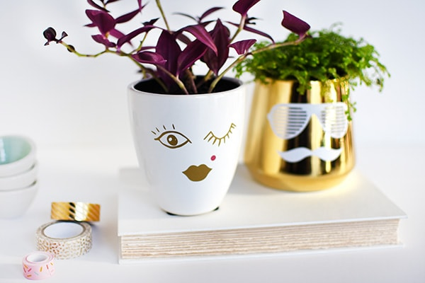 Create this simple craft - His & Hers DIY Face Planters, Delineate Your Dwelling