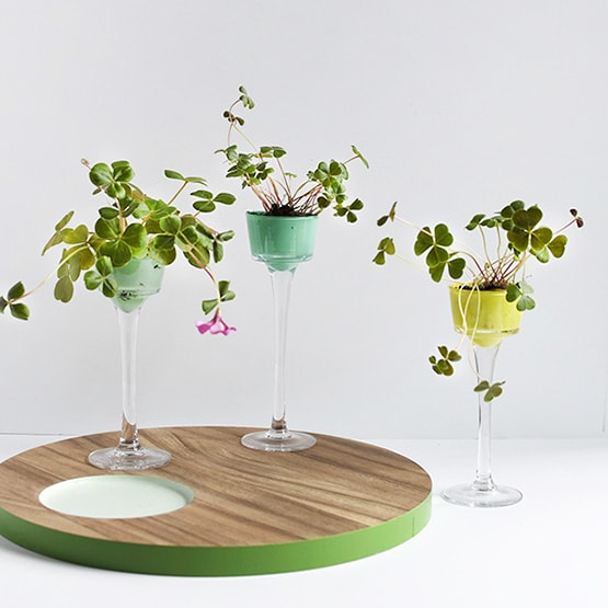 1 Four Leaf Clover Mini Planters