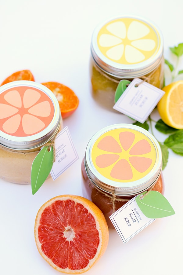 Citrus-Sugar-Scrubs-via-Delia-Creates coral, peach and orange