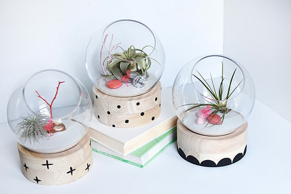 A modern take on a traditional plant terrarium! Painted Crosses, Scallops and Polka Dots add the perfect pattern to the wood base! Delineate Your Dwelling