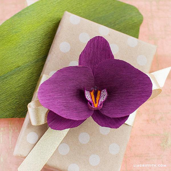 Purple_Crepe_Paper_Orchid